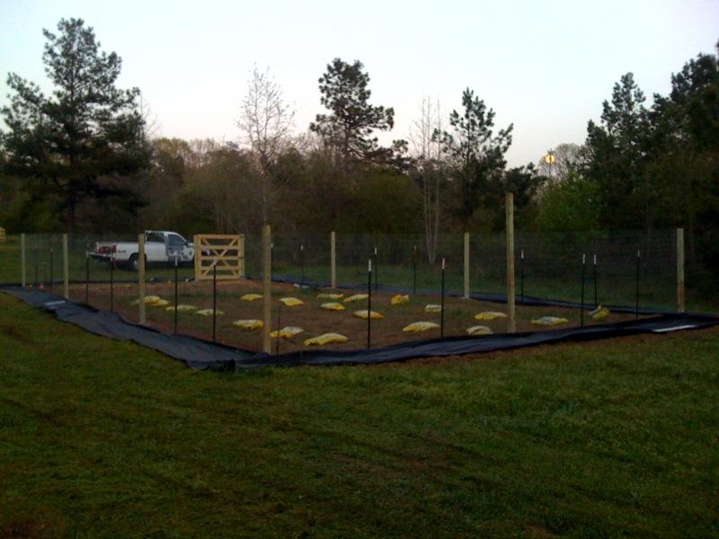 how to build a veggie garden fence